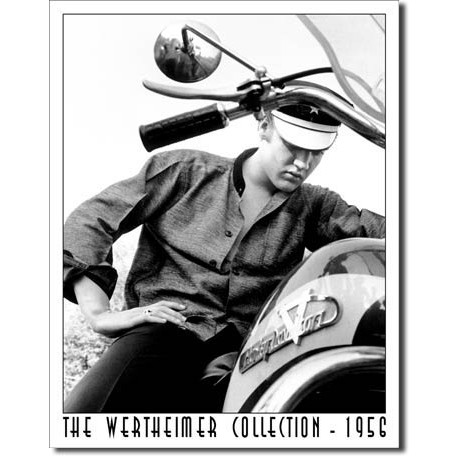 Wertheimer - Elvis on Bike