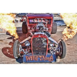 Wild Thang Racer